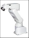 robot rv-a1
